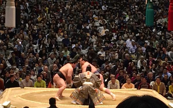 大相撲 春巡業 2016年 平成28年 スケジュール 日程 会場 チケット 入場料