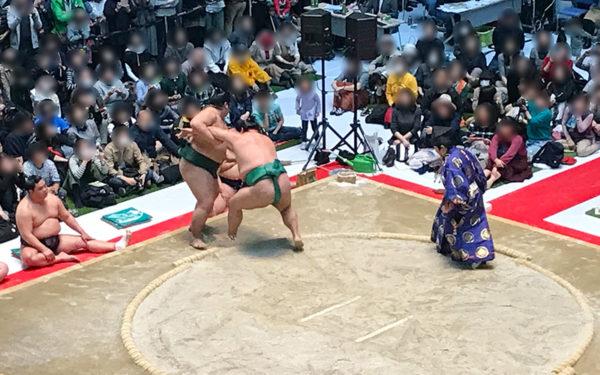 錦木 vs 嘉風